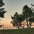 Photos: TON09598夕焼けと海の見える丘