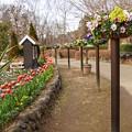 TON09911船橋アンデルセン公園