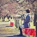 Photos: 満開の梅林を待って…(郷土の森@早咲)