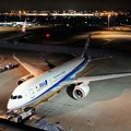Photos: TOM00409羽田空港国際ターミナル