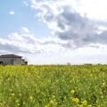 Photos: TOM00751ソレイユの丘