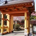 Photos: TOM00893津久井湖城山公園