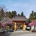 Photos: TOM00894津久井湖城山公園