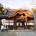 Photos: 深大寺(桜)_0194
