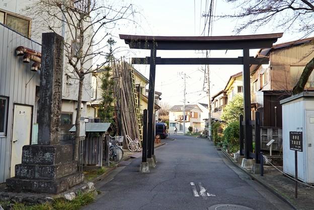 Photos: 黒門(桜)_0198