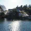 Photos: 井の頭公園(桜)_0234