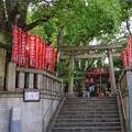 Photos: 横濱ぶらり_1065