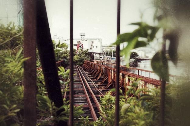 横濱ぶらり_1067