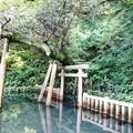 Photos: 鹿島旅行_2151