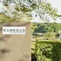 Photos: 相模湖(試し撮り)_2618