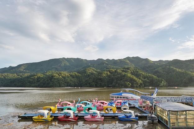 Photos: 相模湖(試し撮り)_2629