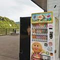 Photos: 相模湖(試し撮り)_2628