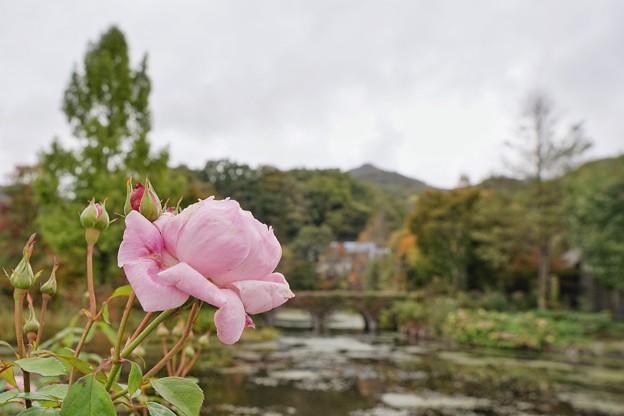 軽井沢&河口湖_4079