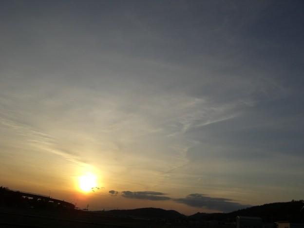 Photos: 夕景の光