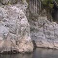 四万十川水系