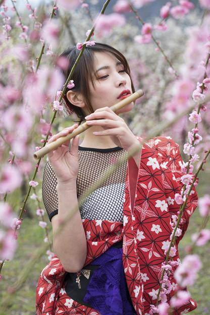 写真: 春を奏でる