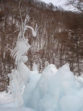 羽ばたき(氷点下の森)