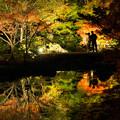 Photos: 秋の夜散歩