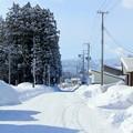 Photos: 雪道