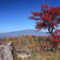 Photos: 日本国 岐阜県 高山市 高根町 チャオ御嶽スノーリゾート付近からの乗鞍岳