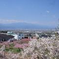 Photos: 日本国 山梨県 笛吹市 八代町 小山城跡からの風景 西側