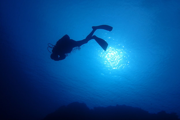 Photos: 2620 海底の太陽@沖縄