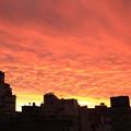 Photos: 2640 ブエノスアイレスの夕焼け@アルゼンチン