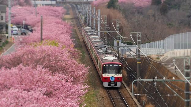 Photos: 京浜急行2100系(20190226)