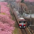 京浜急行2100系(20190226)