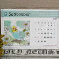 1055-1 2020年卓上カレンダー セキセイインコ
