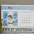 1057-1 2020年卓上カレンダー いろんな鳥