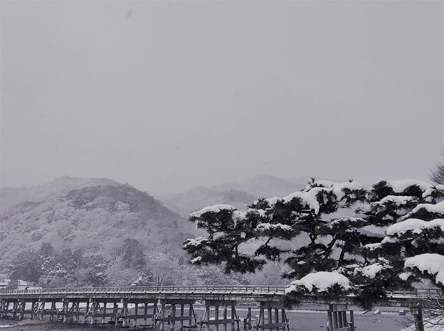 雪の嵐山渡月橋