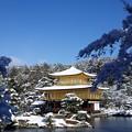鹿苑寺金閣  雪景