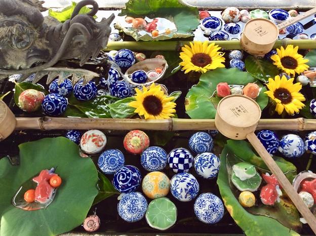 夏本番!京都においで