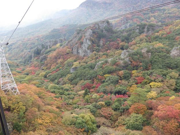 紅葉の寒霞渓 空中散歩