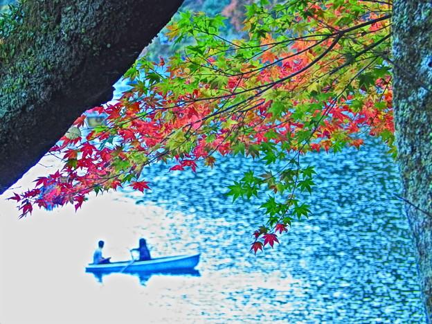 保津川の秋