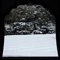 冬の慈照寺