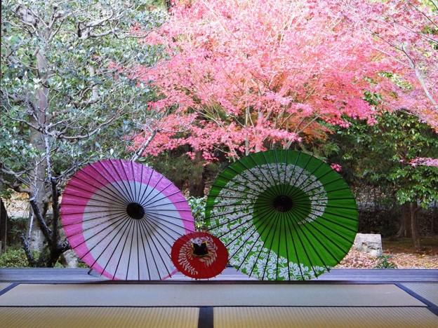Photos: 東福寺塔頭勝林寺にて