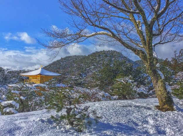 鹿苑寺の冬景色
