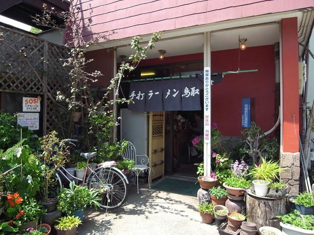 20100510鳥取手打ラーメン(小田原市)