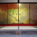 写真: 四季草花図