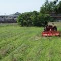 写真: 休耕畑