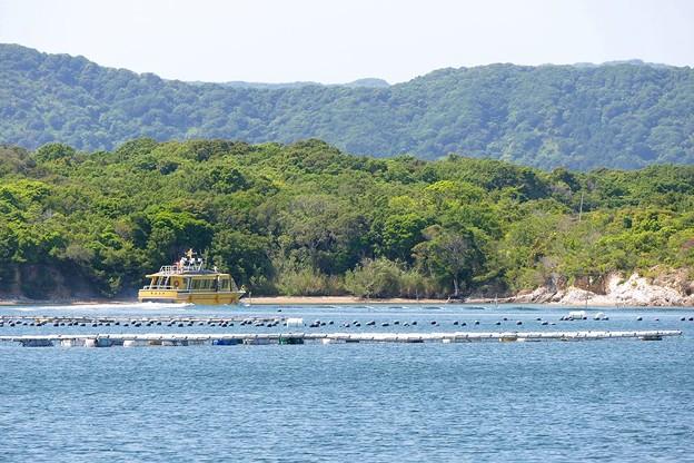 写真: 英虞湾