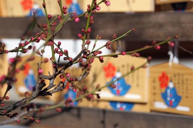 写真: 萩原天神