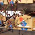 Photos: 萩原天神