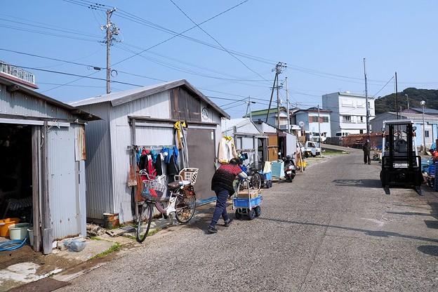 写真: 答志島にて