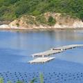 Photos: 英虞湾