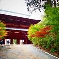 高野山大門の紅葉