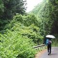 Photos: 女もすなる日傘といふものを男もしてみんとて・・・