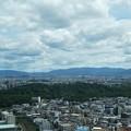 Photos: 仁徳天皇陵